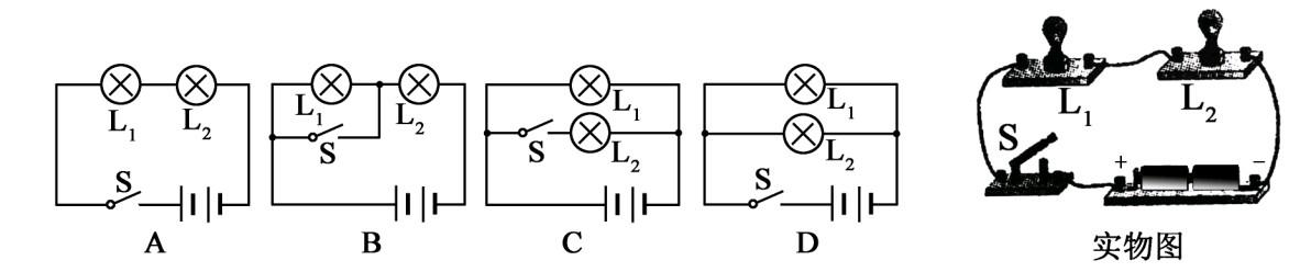 初中物理静电电路电压电阻——试题一